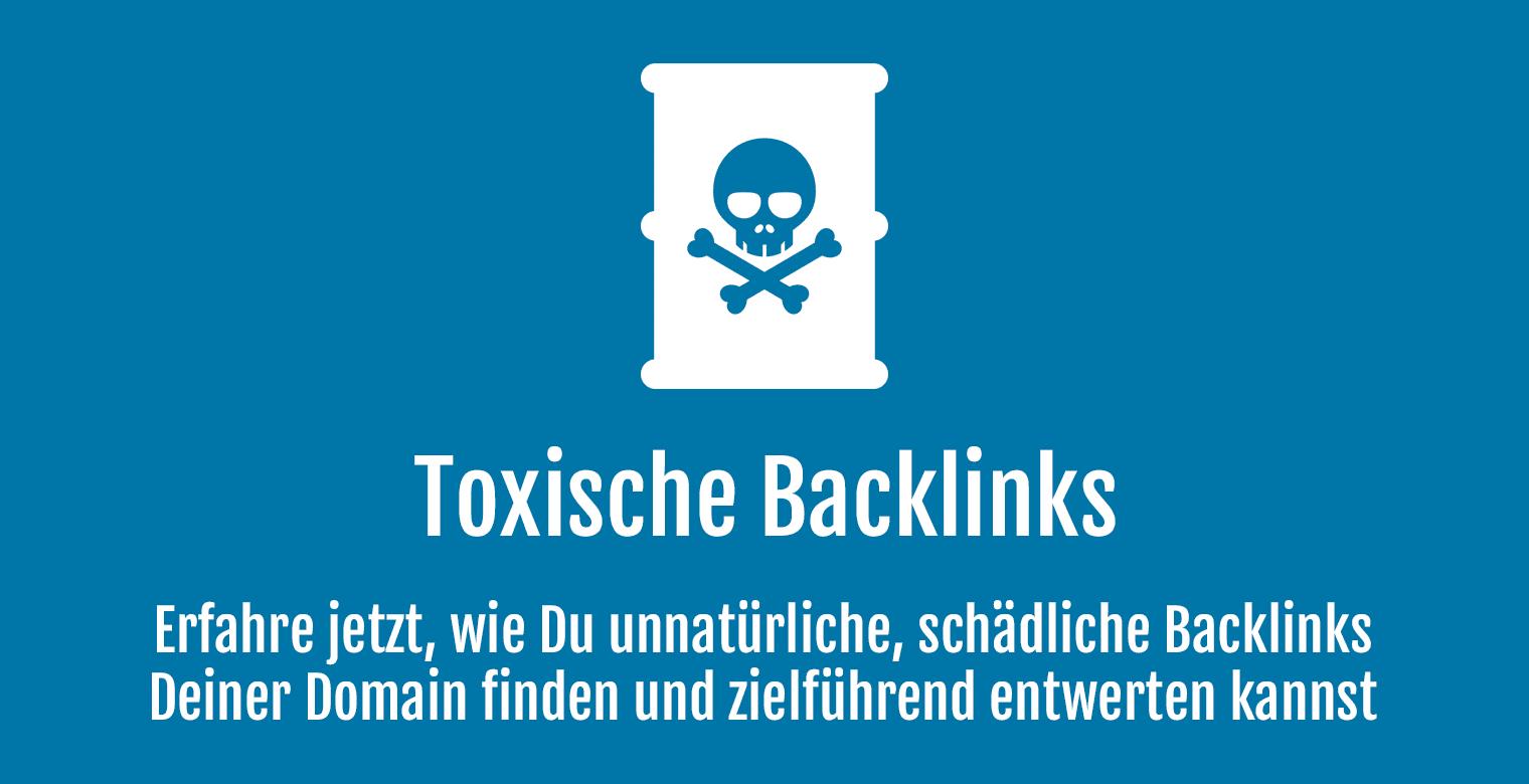 Toxische Backlinks erfassen und entwerten - Header